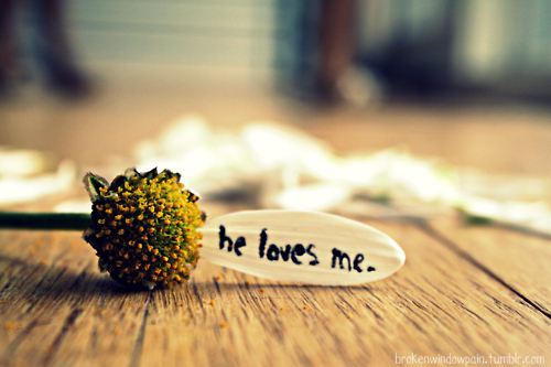 he loves me daisy